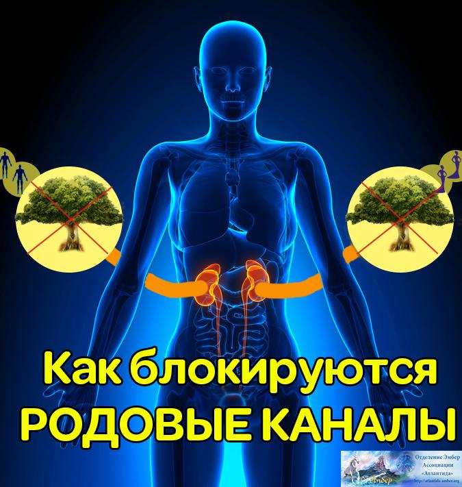 Rodovye_4_1.jpg